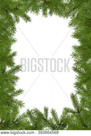 Christmas frame made of fir tree branches