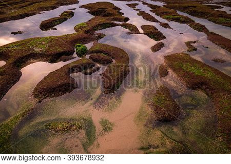 Ocean During Low Tide. Waterscape Background. Clear Water With Sand And Rocks. Stones Covered By Sea