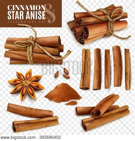 Set Of Cinnamon Sticks With Powder And Star Anise Isolated On Transparent Background Vector Illustra