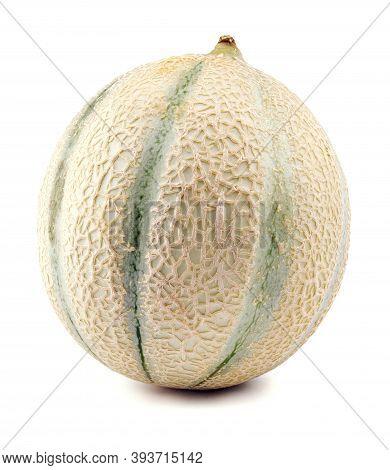 Cantaloupe Melon On A White Background . Melon .