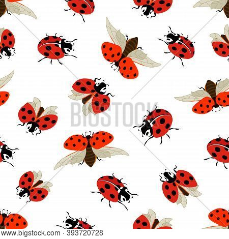 Pattern With Ladybirds On A White Background.ladybugs On A White Background In A Colored Seamless Pa