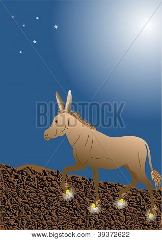 Donkey With Golden Hooves