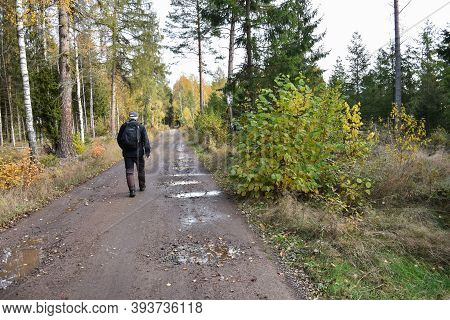 Hiker On A Colotful Dirt Road In Fall Season In The Swedish Province Smaland