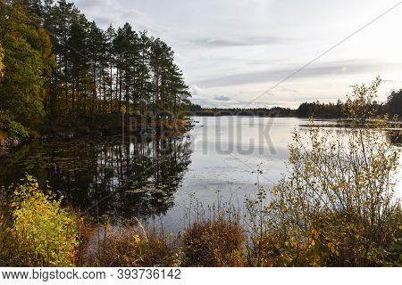Beautiful Lake In Fall Season Colors In The Province Smaland In Sweden