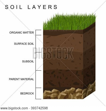Soil Layers Diagram Earth Texture, Stones. Ground With Green Grass On Top. Mineral Particles, Sand,
