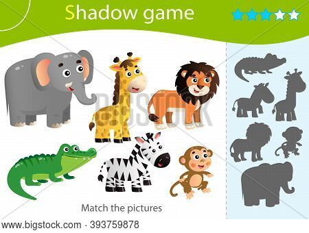 Shadow Game For Kids. Match The Right Shadow. Color Images Of Animals Of Africa. Zebra, Crocodile, G