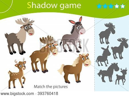 Shadow Game For Kids. Match The Right Shadow. Color Images Of Animals. Elk, Reindeer, Horse, Donkey,