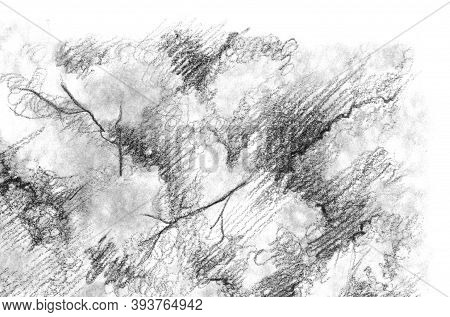 Black And White Monochrome Tree Nature Pencil Sketch Line Art Texture