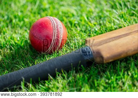 Cricket ball and cricket bat on green grass of cricket pitch