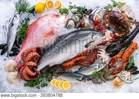 Top view Variety of fresh luxury seafood, Lobster salmon mackerel crayfish prawn octopus mussel red snapper scallop and stone crab, on ice background with icy smoke in seafood market.