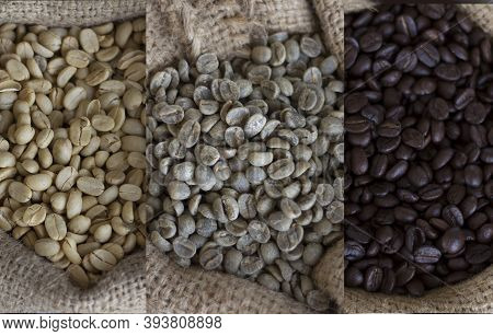 Coffee Beans Before Roasting And After Roasting.