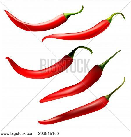 Vector Realistic Illustration Of Isolated Red, Hot Peppers.