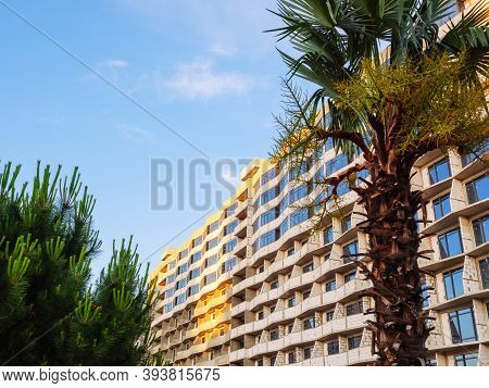 Large Tenement Unfinished New Building On A Blue Sky Background With Palm And Pine Trees In The Fore