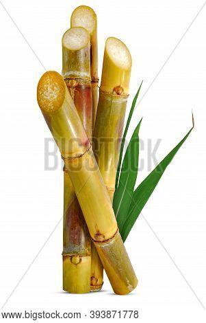 Sweet Sugarcane Isolated Cutout On White Background