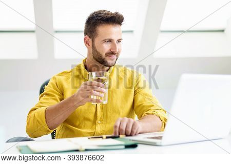 Handsome Businessman Using Laptop While Working From Home