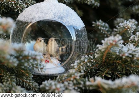 Christmas Decor. Decorative Birds In A Glass Cocoon On A Christmas Tree In Hoarfrost Background.wint