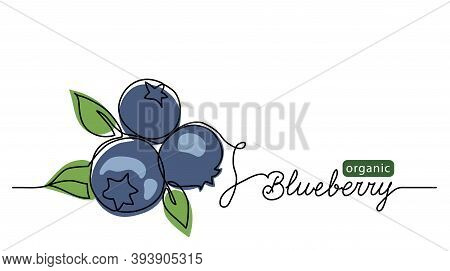 Blueberry Vector Illustration. One Line Drawing Art Illustration With Lettering Organic Blueberry.