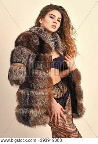 Woman Tousled Hairstyle Posing In Black Lingerie And Fur Jacket. Girl Temptress Wear Stockings And F