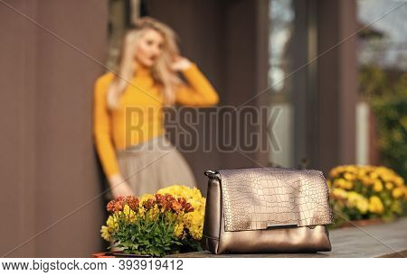 Really Useful Accessory. Bronze Handbag Clutch For Woman. Luxury Leather Purse. Shopping Sale And Di