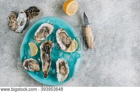 Fresh Oysters In A Blue Plate With Ice And Lemon On A Concrete Background.