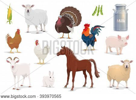 Farm Animals Cartoon Vector Sheep, Turkey And Cock, Pig, Goat And Horse With Chicken And Rabbit. Cor