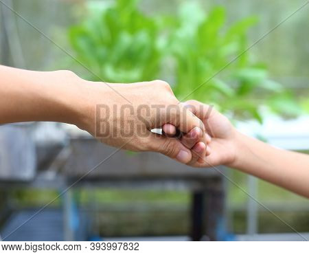 Mother Hold Child Hand For Helping , Recure And Walk Together