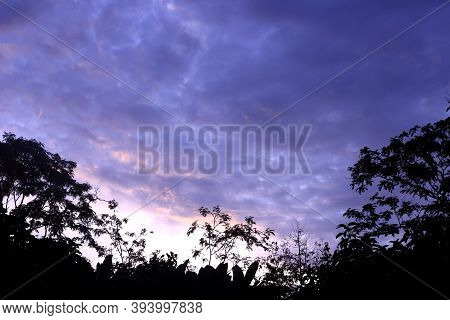 Silhouette Tree Against Mornig Sky As Nature Background