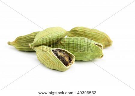 Pile Of Whole Cardamom