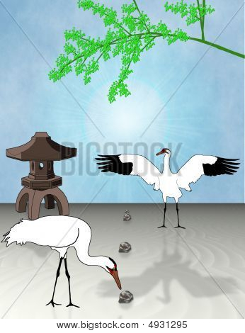 Two whooping cranes investigating a Japanese Zen garden poster