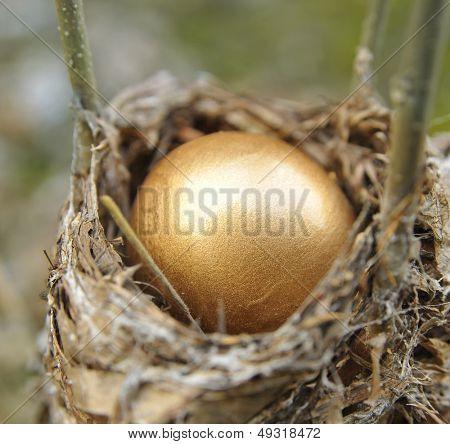 Close Up Of A Golden Nest Egg