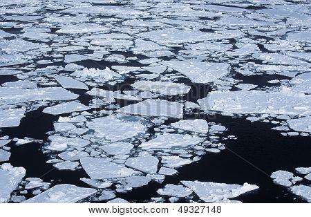 Antarctica Weddell Sea ice flow