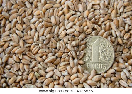 one hrivna coin among wheat grains as symbol of agricultural job macro shot poster