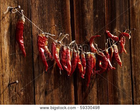 Red chili peppers on a string