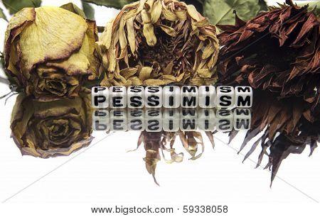 Pessimism Text Message