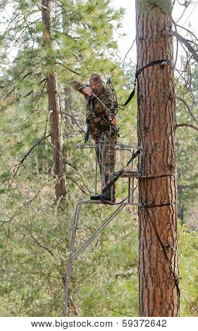 Bow hunter in a ladder style tree stand with bow at full draw, demonstrating good safety by using a safety harness poster
