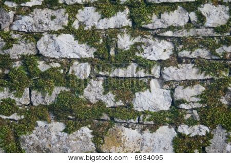 Stone Wall With Grass