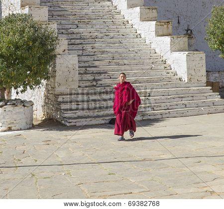 A Young Bhuddhist Monk In Paro, Bhutan