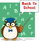 Wise Owl Teacher Cartoon Mascot Character With A Speech Bubble And Text poster