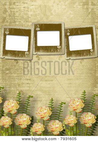 Old Alienated Slides On The Wall In The Room With Flowers