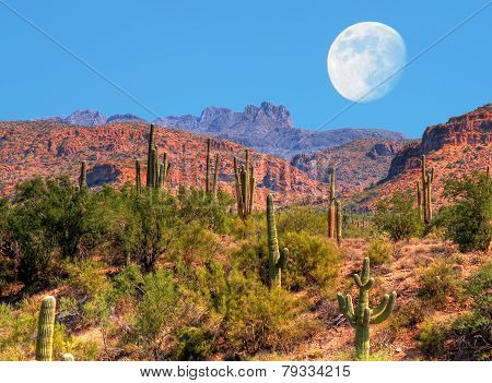 Desert moon over the southwestern USA desert and mountains poster