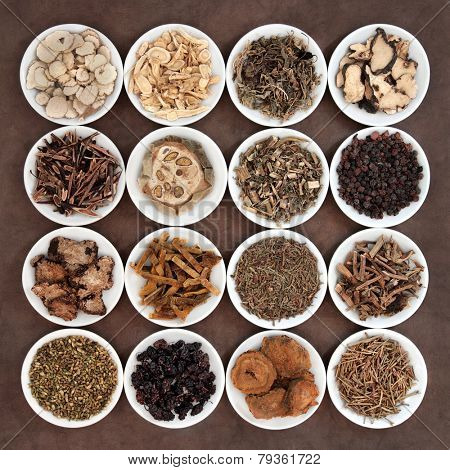 Chinese herbal medicine selection in porcelain bowls.