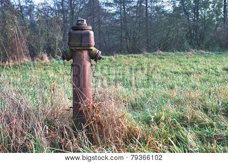 Old Red Rusty  Hydrant On Meadow In Grass