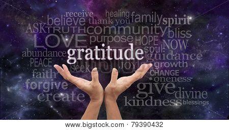 Infinite Gratitude