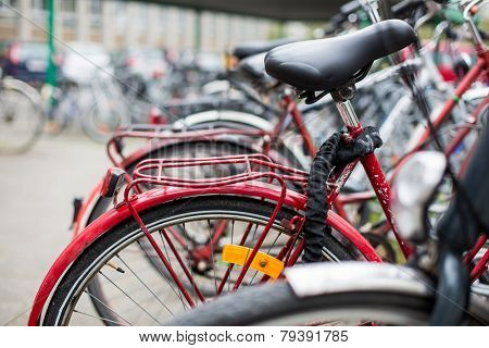 Bike rental service - Many bikes standing in bike stands, available for rent as a great mean of transport in the city