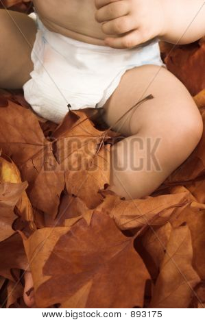 Baby  Sitting On Leaves
