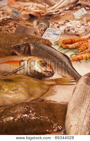 Fresh Fish In A Market Stall