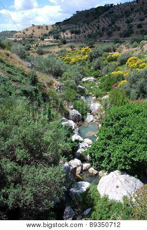 Mountain stream, Andalusia.