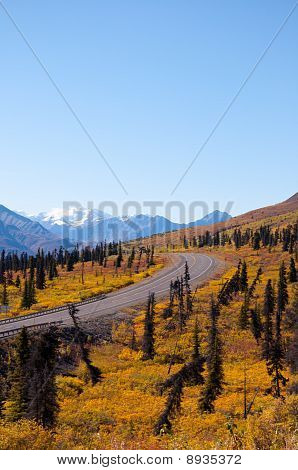 Fall Road Into Mountains Portrait