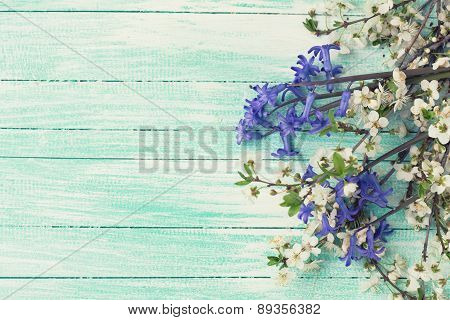 Flowering Tree Branches And Blue Flowers