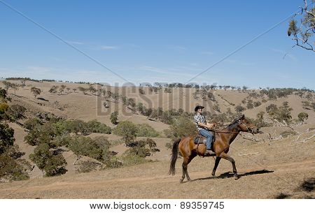 Young Horse Instructor Or Cattleman Riding The Animal In Cowboy Hat And Rider Boots